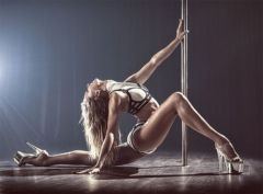 Exotic pole dance festival